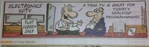 Cartoon Strip - Pune Mirror